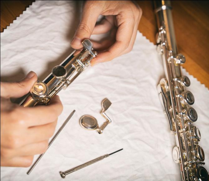 Disassembled Instrument